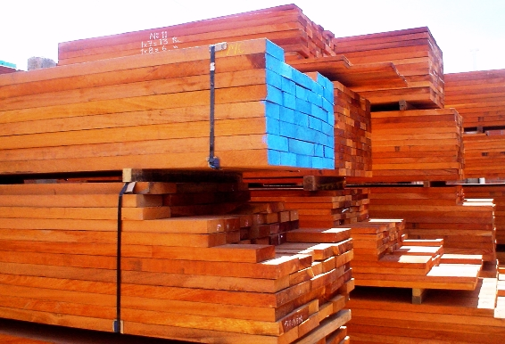 Mahogany timber logs exporting from south